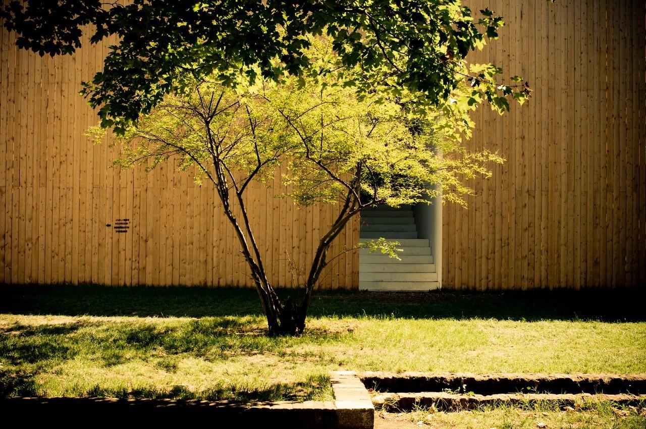 biennale2011-26