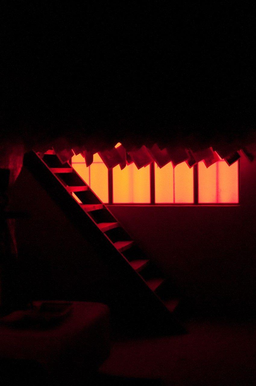 biennale2011-3