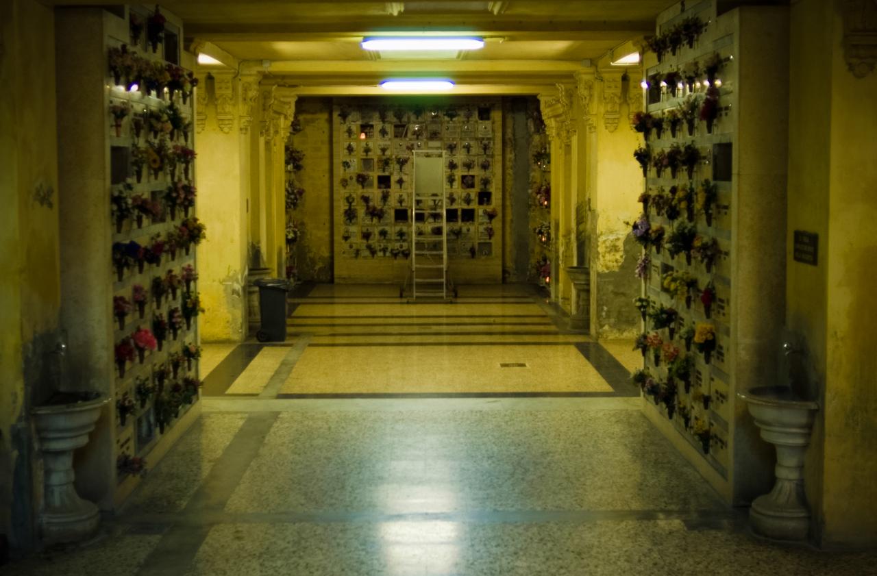 Cimitero Storico di Reggio Emilia: Suburbano