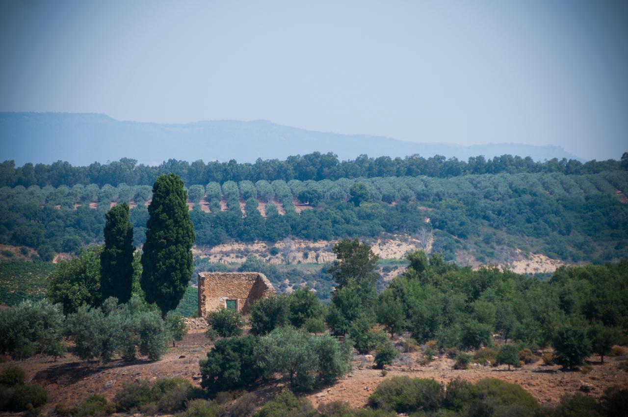 sicilia-9